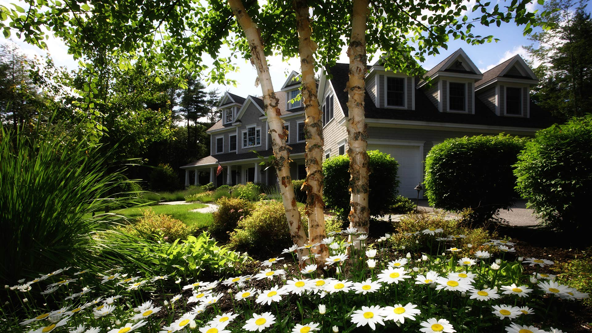 home-landscaping-tips-that-help-save-energy